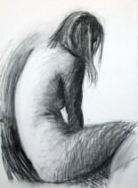 Willow charcoal, compressed charcoal